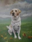 Cream Labrador