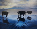 Lochside Cattle